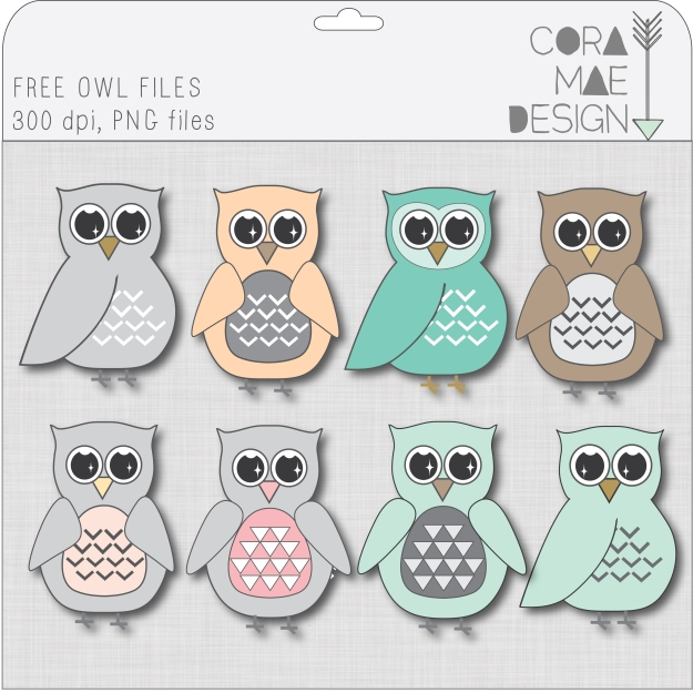 free owl clipart images